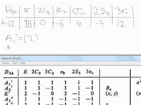 theory part 8 d3h point problem ir and