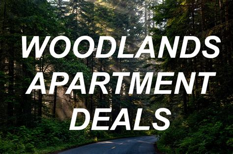 Great Apartment Deals Houston The Woodlands Apartment Deals Fancy Houston Apartments
