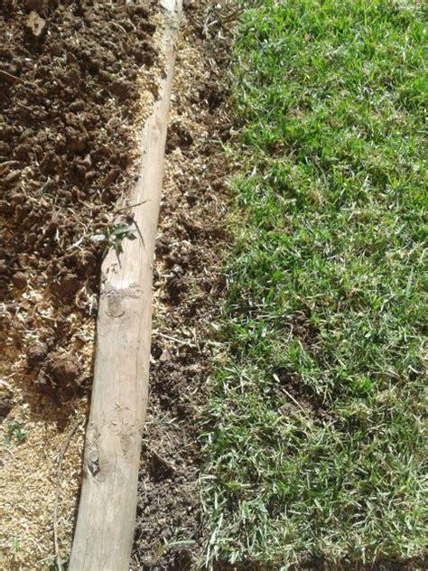 crabgrass lawn border to stop grass growth gardening
