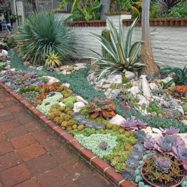 succulent front yard design the world s catalog of ideas