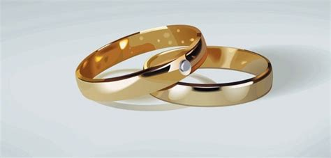 wedding ring clip vector misc free vector for free