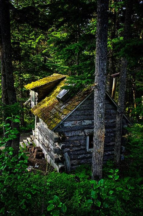 Cabin In The Woods by Tiny Camouflage Log Cabin In The Woods Tiny House Pins