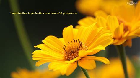 quotes  yellow wallpaper wallpapersafari