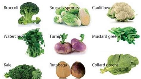 vegetables with fiber fiber rich foods and fruits for constipation 2014 vkool