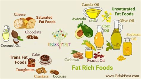 healthy fats rich foods vs bad foods what to eat and what to avoid