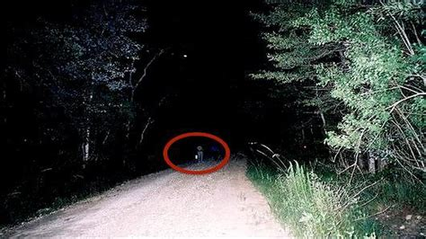 clinton road the most haunted road in america 5 creepiest most haunted roads in the world the