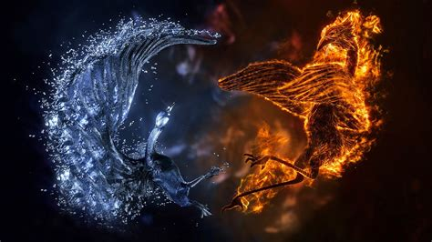 fire  ice wallpapers  images