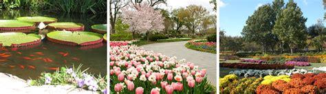 botanical garden in dallas the dallas arboretum and botanical garden