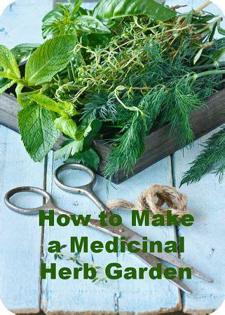 how to start your own herb garden activist awake how to start your own medicinal herb garden herbal
