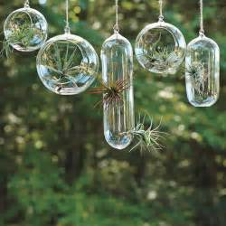 amazing hanging garden in glass bubbles modern house