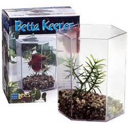 Pics Photos Fish Tank Aquariums Betta Fish Tanks