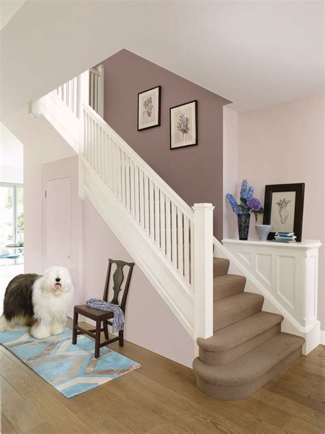 hall paint ideas dulux nutmeg white other kitchen walls dining room