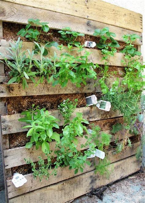 Vertical Herb Garden Pallet Pallet Garden