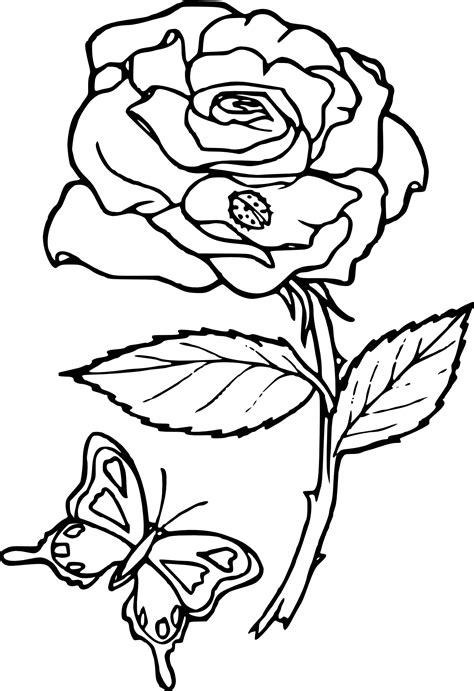 Coloriage rose fleur à imprimer