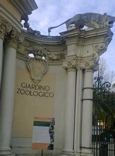 ingresso zoo roma osservare gli animali riflessioni e nostalgia il sito