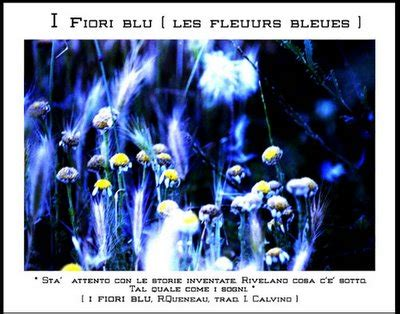 queneau i fiori stigma e diversit 224 a foggia e provincia passando per il