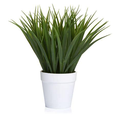 wilko artificial grass  pot wilko