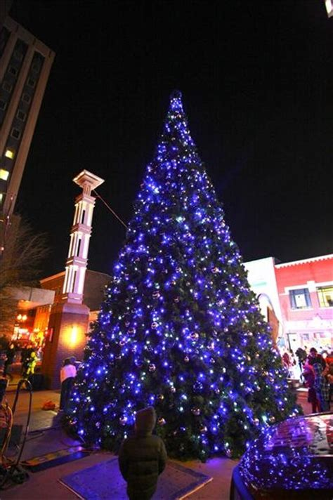 christmas lights knoxville tn knoxville tn places spaces to love pinterest trees