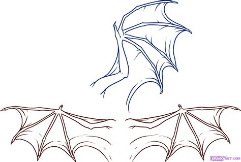 Drawing Dragons by How To Draw Wings Step By Step Dragons Draw A