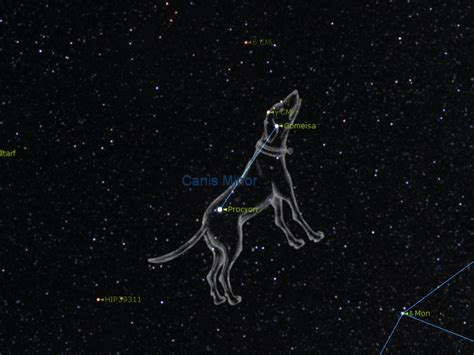 sirius puppy sirius constellation pics about space
