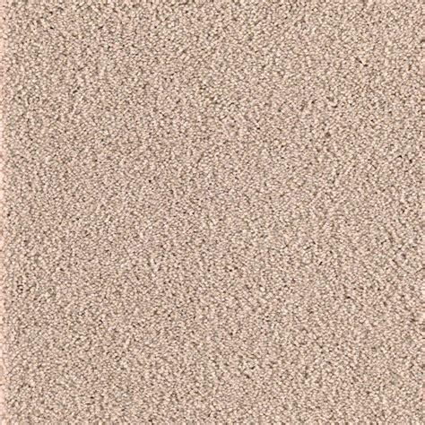 home decorators collection san rafael i s color beige
