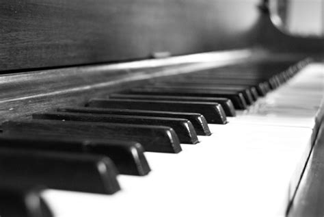 Free Images Black And White Technology Musician