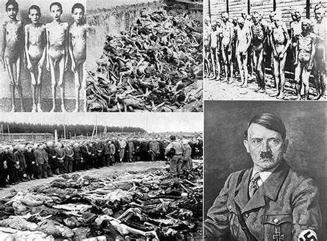 imagenes fuertes del holocausto nazi cos de concentra 231 227 o nazistas