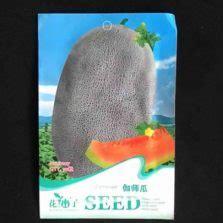 Harga Bibit Terong Cap Panah Merah jual benih terong yumi f1 400 biji harga murah panah merah
