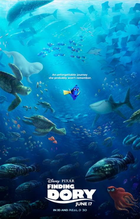 Www Finding The Of Finding Dory Dory S Story