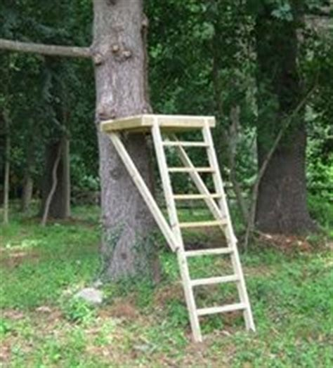 backyard zip line platform 1000 images about treehouse zipline on pinterest tree