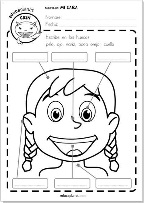 partes de la cara dibujo para colorear partes de la cara ficha gratis para imprimir espa 241 ol e