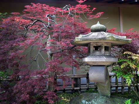 Japanese Garden Wall Mural Pixers 174 We Live To Change Japanese Garden Wall Murals