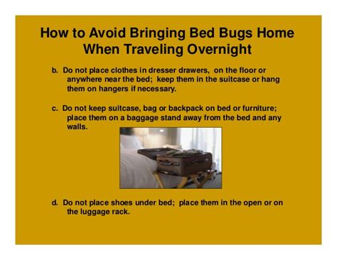 how to sleep with bed bugs how to sleep with bed bugs 28 images wupnet house