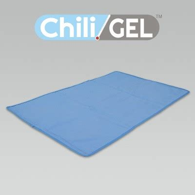 Chili Pad For Bed by Chili Pad Personal Comfort Bed Review Ebooks