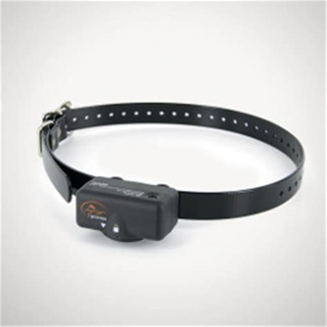 shock collars sportdog bark sbc 6 no bark collar huntemup