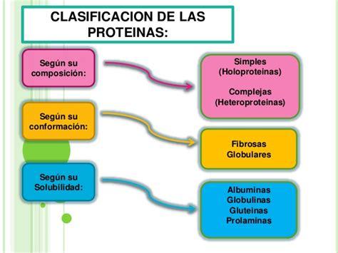 proteinas y aminoacidos prote 205 nas y amino 193 cidos biomol 233 culas