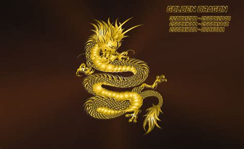 wallpaper gold dragon golden dragon by ilnanny on deviantart