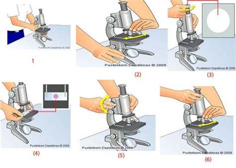 Mikroskop Untuk Pelajar Sx A1 tuliskan langkah langkah menggunakan mikroskop altri