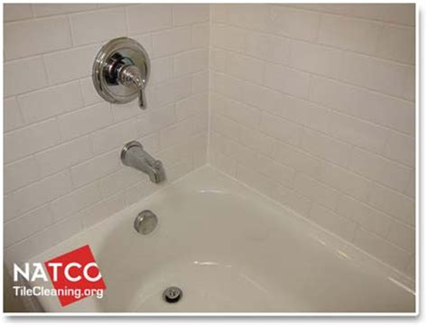 Best Cleaner For Mold In Shower by How To Remove Mold In A Tile Shower