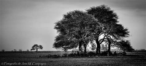 imagenes en blanco y negro de un paisaje fotograf 237 a paisaje de co en blanco y negro el blog