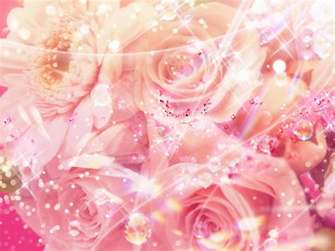 pink color background bing images pink roses bing afbeeldingen home sweet home pinterest