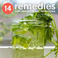 uti remedies at home urinary tract infection treatment at home with parsley