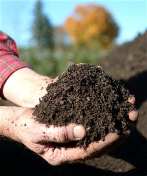 Pupuk Organik Kompos Dari Sah macam macam pupuk organik dan anorganik achsan