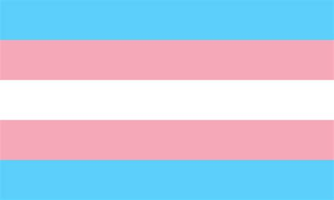 transgriot hey media we trans folks a flag use it