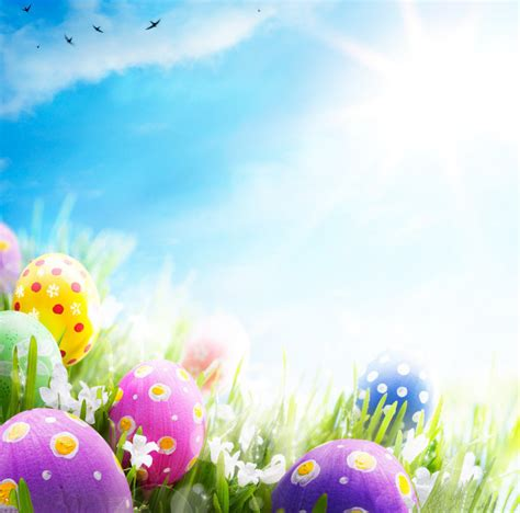 easter themes pictures aliexpress com buy 10x10ft easter theme vinyl