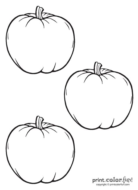 multiple pumpkin coloring pages 3 little pumpkins coloring page print color fun