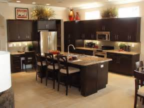 Dark Kitchen Cabinet Ideas kitchen cabinets beautifully on a budget home design ideas 2017
