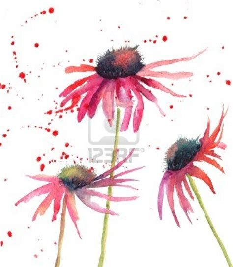 Simple Flower simple watercolor flowers for diy cards and