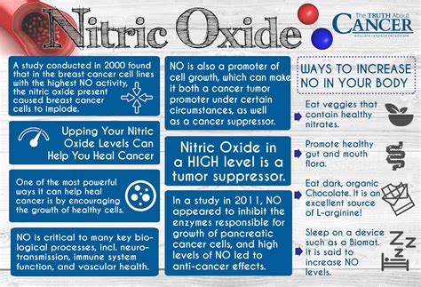 supplement antonym list of synonyms and antonyms of the word nitric oxide