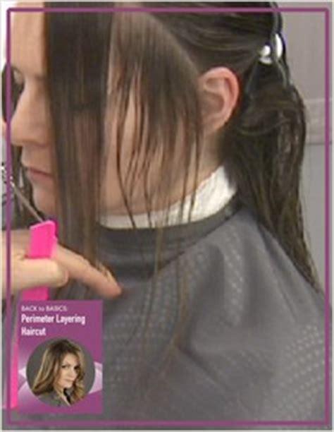 perimeter layers hair miladypro back to basics perimeter layers haircut